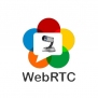AVer WebRTC License [040DV2B1-ABC]